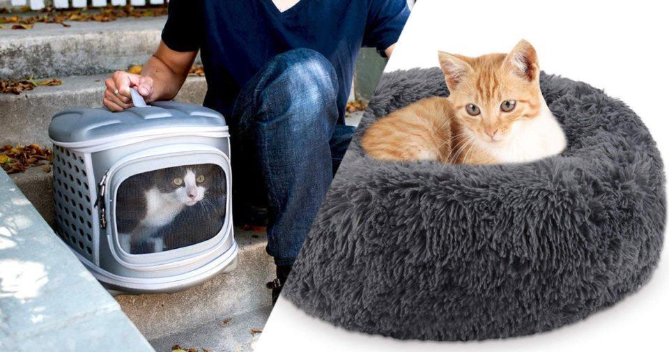 Deguisement 25 idées cadeaux pour faire plaisir à votre chat