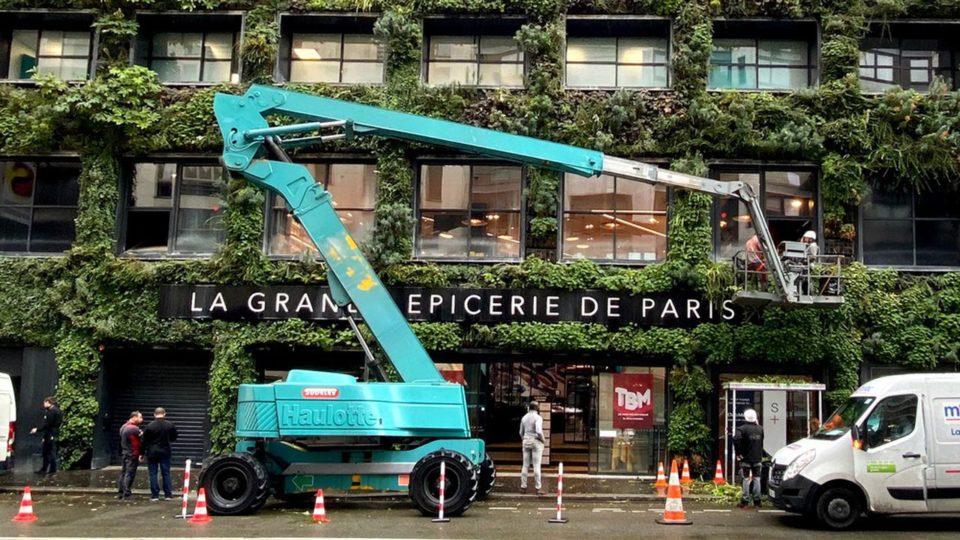 Epicerie Tracer City Nature fait entrer le mur végétalisé dans le monde du luxe