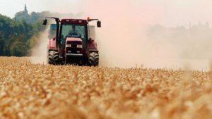 Animaux «Nous voulons que les gens comprennent notre métier»: le cri de détresse d'une agricultrice