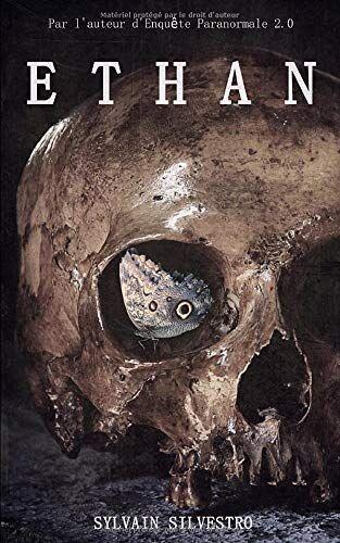 Ebook eBook La dernière aventure de Sylvain Silvestro Gratuit (Dématérialisé – Kindle)