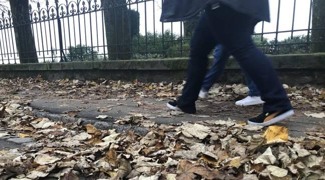 Jardin Nantes: Au fait, que deviennent les feuilles mortes ?