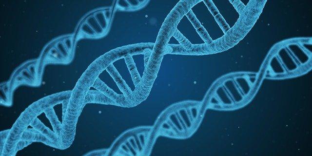 Enfant Le généticien chinois à l'origine des jumelles génétiquement modifiées derrière les barreaux