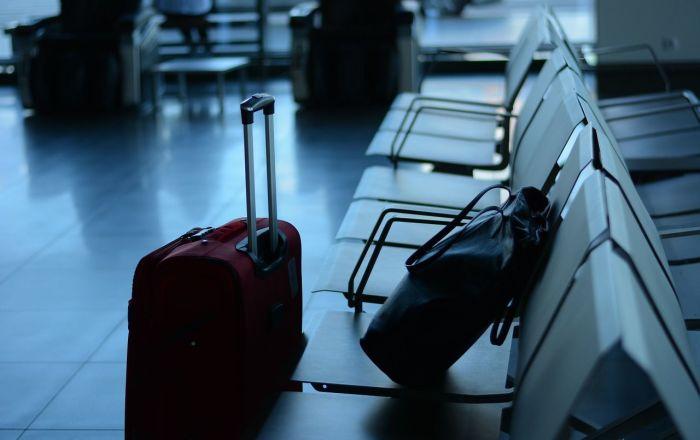 Bagage Un homme avec 200 créatures venimeuses tente de monter dans un avion – converse