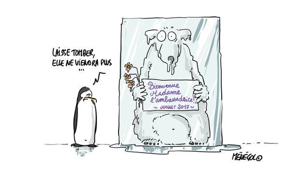 Livres Le dessin d'Olivier Ménégol: «Gelée Royal»