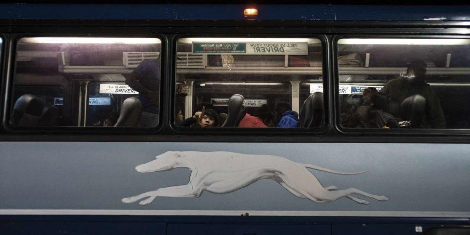 Bagage « Lake Success »: l'envers de l'Amérique vu du Greyhound par Gary Shteyngart