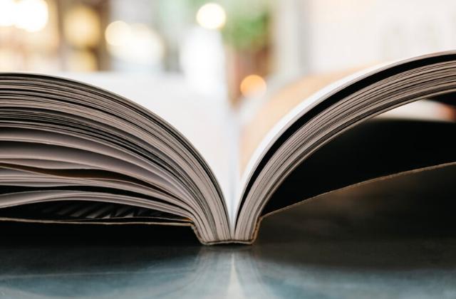 Ebook Couper ses livres en deux, astuce de génie ou véritable crime ?