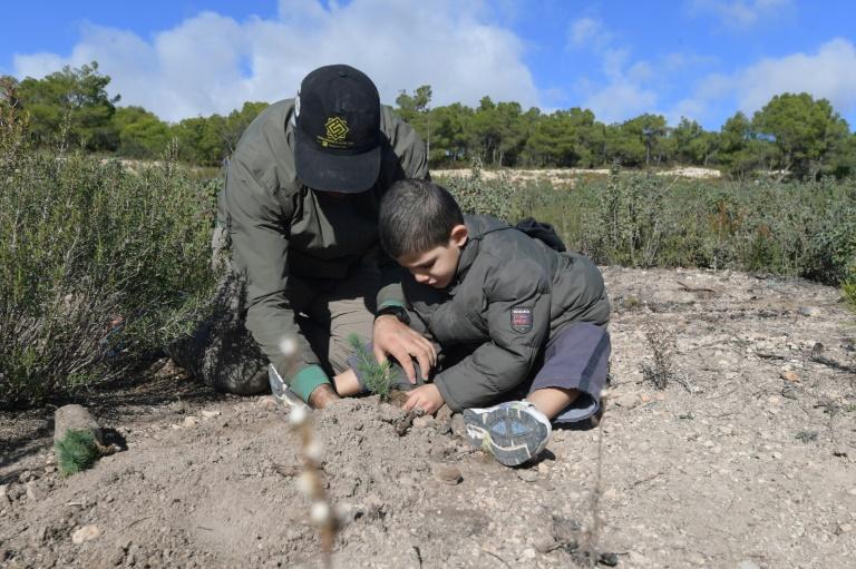 Camping Graines d'espoir: des bénévoles tunisiens au chevet des forêts du pays