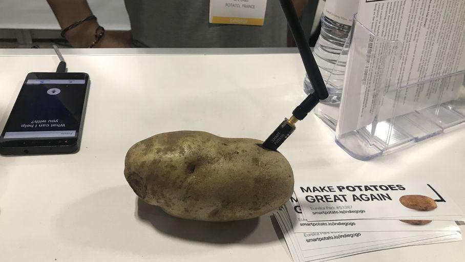 High-tech Actualité : CES 2020 – Entretien avec le fondateur de la pomme de terre connectée qui se moque bien du CES