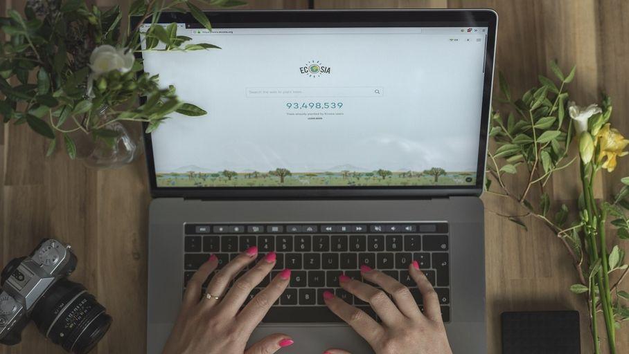 Animaux Actualité : Le moteur de recherche Ecosia a planté 100 millions d'arbres